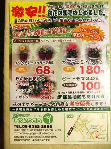 「ヨガ room Takeda」 鉢花販売始めました